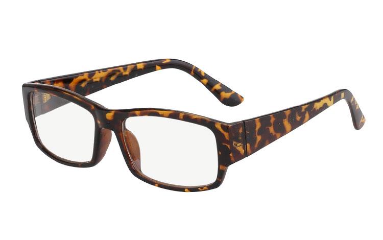 billige brillen mit klarem glas gro e auswahl. Black Bedroom Furniture Sets. Home Design Ideas